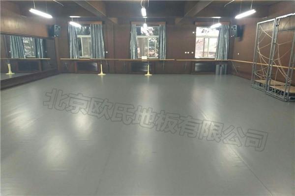 舞蹈地胶--北京市第十八中学附属实验小学