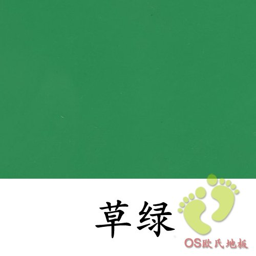 草绿色舞蹈排练厅地板胶